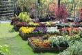 http://www.zahrada-stella.cz/images/fotogal/00005-vystava-jak-na-to-/img_1410204_thumb.jpg