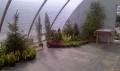 http://www.zahrada-stella.cz/images/fotogal/00005-vystava-jak-na-to-/img_6048452_thumb.jpg