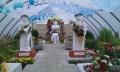 http://www.zahrada-stella.cz/images/fotogal/00007-vystava-bozska-uroda/img_1179766_thumb.jpg
