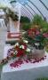 http://www.zahrada-stella.cz/images/fotogal/00007-vystava-bozska-uroda/img_2277404_thumb.jpg