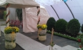 http://www.zahrada-stella.cz/images/fotogal/00007-vystava-bozska-uroda/img_4027520_thumb.jpg
