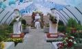 http://www.zahrada-stella.cz/images/fotogal/00007-vystava-bozska-uroda/img_4253917_thumb.jpg