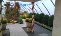 http://www.zahrada-stella.cz/images/fotogal/00007-vystava-bozska-uroda/img_7483088_thumb.jpg