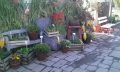 http://www.zahrada-stella.cz/images/fotogal/00007-vystava-bozska-uroda/img_8332302_thumb.jpg