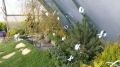 http://www.zahrada-stella.cz/images/fotogal/00008-pohadkova-zahrada/img_5529256_thumb.jpg