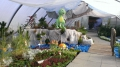 http://www.zahrada-stella.cz/images/fotogal/00011-jak-jsme-ucili-draka-letat/img_246421_thumb.jpg