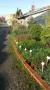 http://www.zahrada-stella.cz/images/fotogal/00011-jak-jsme-ucili-draka-letat/img_257760_thumb.jpg