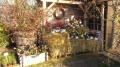 http://www.zahrada-stella.cz/images/fotogal/00011-jak-jsme-ucili-draka-letat/img_6427042_thumb.jpg